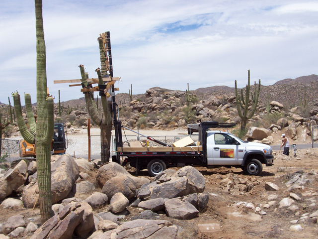 Moving saguaro 01.jpg